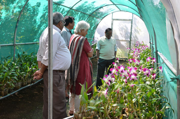 Orchid Research & Development Centre